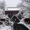新年恒例、新発田市内の神社仏閣巡り