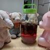 リリオさんの手作りプルーン酒開封の儀!!みんなで試飲会してみたよ