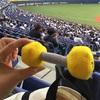 (野球) がんばれ、オリックス