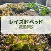 【レイズドベッド徹底解説】お庭でオシャレな家庭菜園を始めよう!レイズドベッドの実践例と作り方(DIY)
