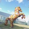 十和田現代美術館に行ったよ