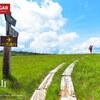 【尾瀬】田代山・帝釈山、ワタスゲとニッコウキスゲが揺れる天空の湿原を歩く尾瀬の旅