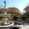 2017年11月、北山緑化植物園で紅葉と秋バラを無料で見てきた!自転車・バイクの無料駐輪場も確認してきたぞ!【兵庫県西宮市北山町】