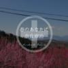 【おそとのええとこ】春のあなたに奈良療治【奈良-下市町/広橋梅林】