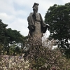 桜祭り in ハノイ