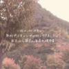 秋のバーベキュー 無料デイキャンプに行ってきました。五天山公園【北海道札幌市】