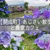 【あじさい】開成町のあじさい散歩と農家カフェ「Raku」