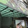 旅の羅針盤:台北にある「台灣昆蟲館」は、台北版「ファーブル昆虫館」。