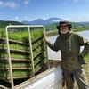 毎年恒例、田植えのお手伝い。