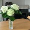 6月6日は紫陽花のおまじない!わるいものをやっつけて、金運・幸運をつかむ〜♪