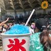夏びらき☆彡