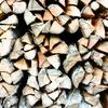 焚き火好きなら知っておきたい薪の辞典