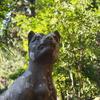 【秩父】猪狩山~秩父御岳山 オオカミ息づく歴史トラベル