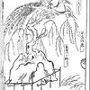 『男色比翼鳥』巻6の13 挿絵解説