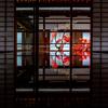 京都・花園 - 霧島躑躅咲く 妙心寺大心院