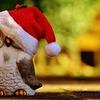 クリスマスの日に部屋の断捨離決行中!足の踏み場がない、今日中に終わるのかな?