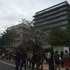 東京農業大学☆学園祭「収穫祭」に行ってきた!