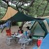 キャンプに行く 『弁天浜キャンプ場』1日目 ~快適なキャンプ場でお魚と戯れました~