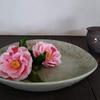 椿と海石榴とお茶の香り