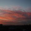 Cotton candy sunsetは、雲の形の話じゃなくて空の色のことだった