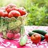 夏野菜なのに「冬瓜」と呼ばれる理由