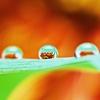 水のプラズマ殺菌