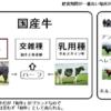 牛肉の種類