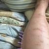 脚の可動域