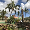 子供と気楽にハワイ旅行④ウォーターテーマパーク『ウェット・アンド・ワイルド・ハワイ』