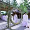 亀ヶ池八幡宮で「夏越大祓式」令和元年も7月7日開催!!