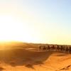 【砂漠】と【砂丘】の違いとは何?