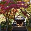 北鎌倉の古刹 円覚寺は紅葉も楽しめます。(Kamakura, Engakuji)