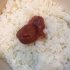 豚肉の味噌炒め弁当