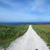 宗谷丘陵の「白い道」