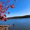 晩秋のヘマタイト湖は癒しの散歩ができました…