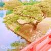 【モデルコース】香川県高松市の旅2泊3日モデルプランをご提案!!