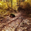 秋の色を探して北上とモントリオール市内