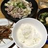 キャベツと豚肉の蒸し煮・きんぴらごぼう・圧力鍋で大根と鶏ムネ肉の煮物