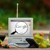 【開始2週間】Google Adsenseに合格したよ!対策や実際に起きた問題点は?