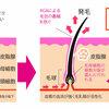 ミノキシジルタブレット効果と副作用の最新情報