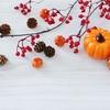 【季節の着物コーディネート】秋本番!袷の季節が嬉しい10月