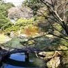 【京都】『青蓮院門跡』に行ってきました。 京都観光 京都旅行 女子旅
