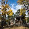 【232】台東区上野桜木 広角15ミリの寛永寺