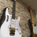 guitar cover 日記 \(( °ω° ))/
