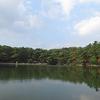 ことし2月以来の再度公園・修法ヶ原池へ。