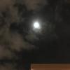 1月21日獅子座満月皆既月食パート2‼️(補足バージョン)