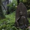 雨の御岩神社 水そして緑