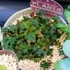🌵多肉植物  薬剤散布の効果🌵