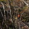 初冬の工石山遊山 頂に登る