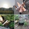 【生駒の大鳥探検(2)】太陽のヤタカラスとナワテの地【縄手遺跡、鳴川分水路、二本松古墳】